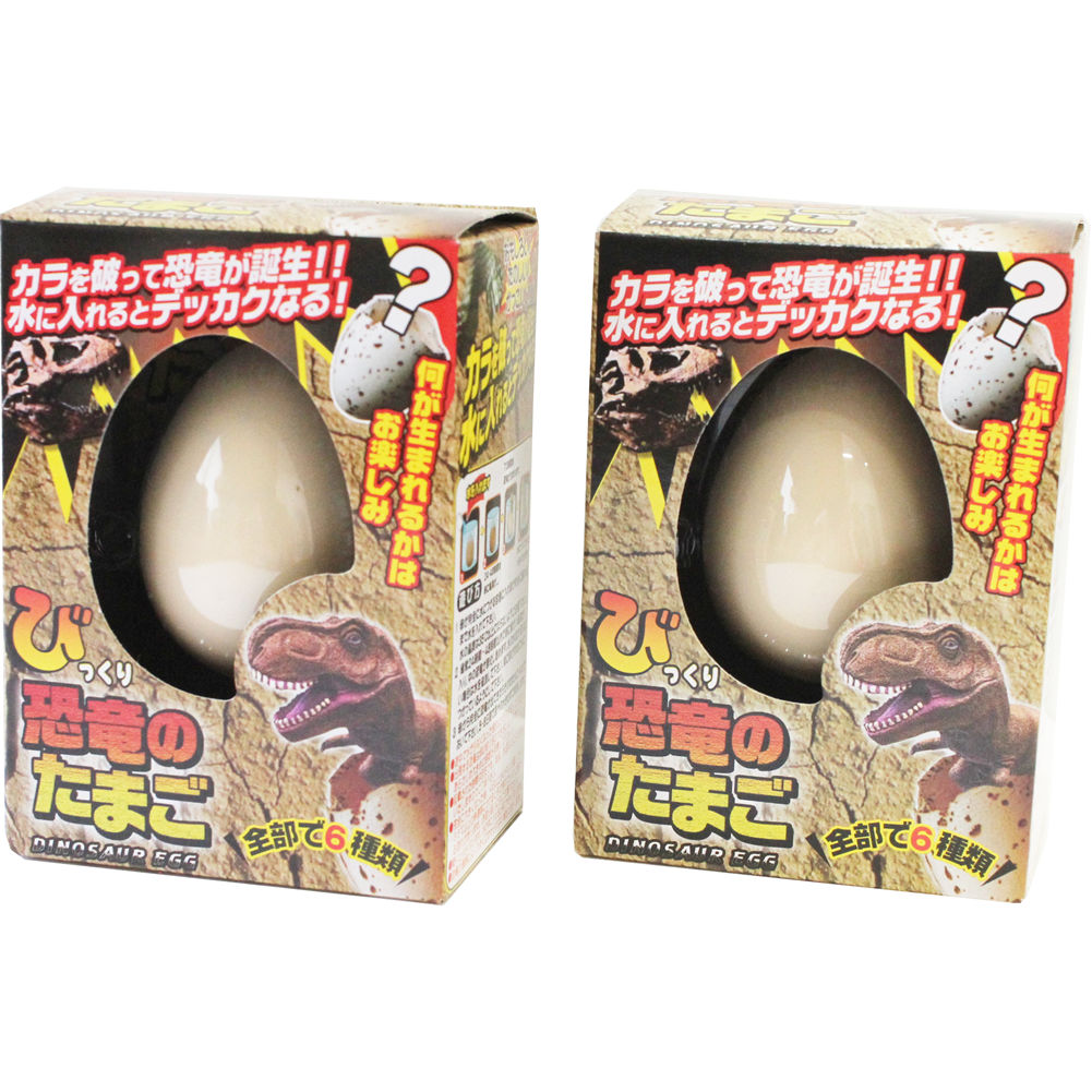 Japanese Product JZZFA206-667-2